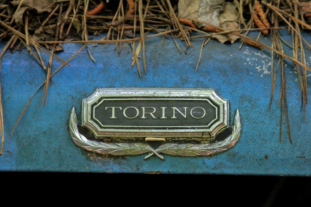 Кладбище старых автомобилей, фото 14