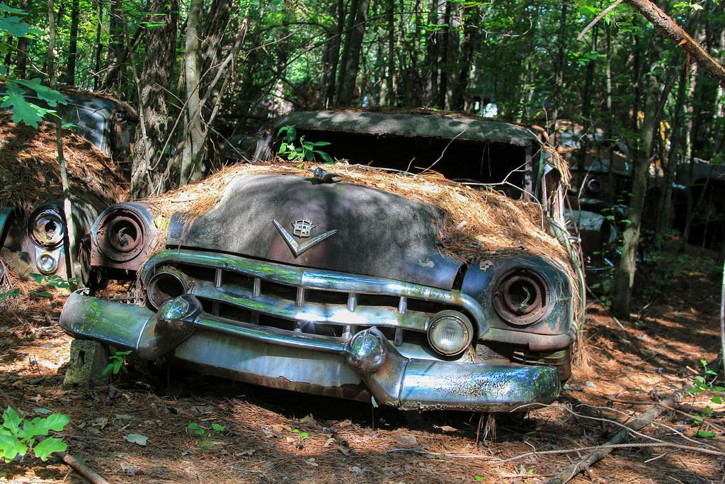 Кладбище старых автомобилей, фото 5