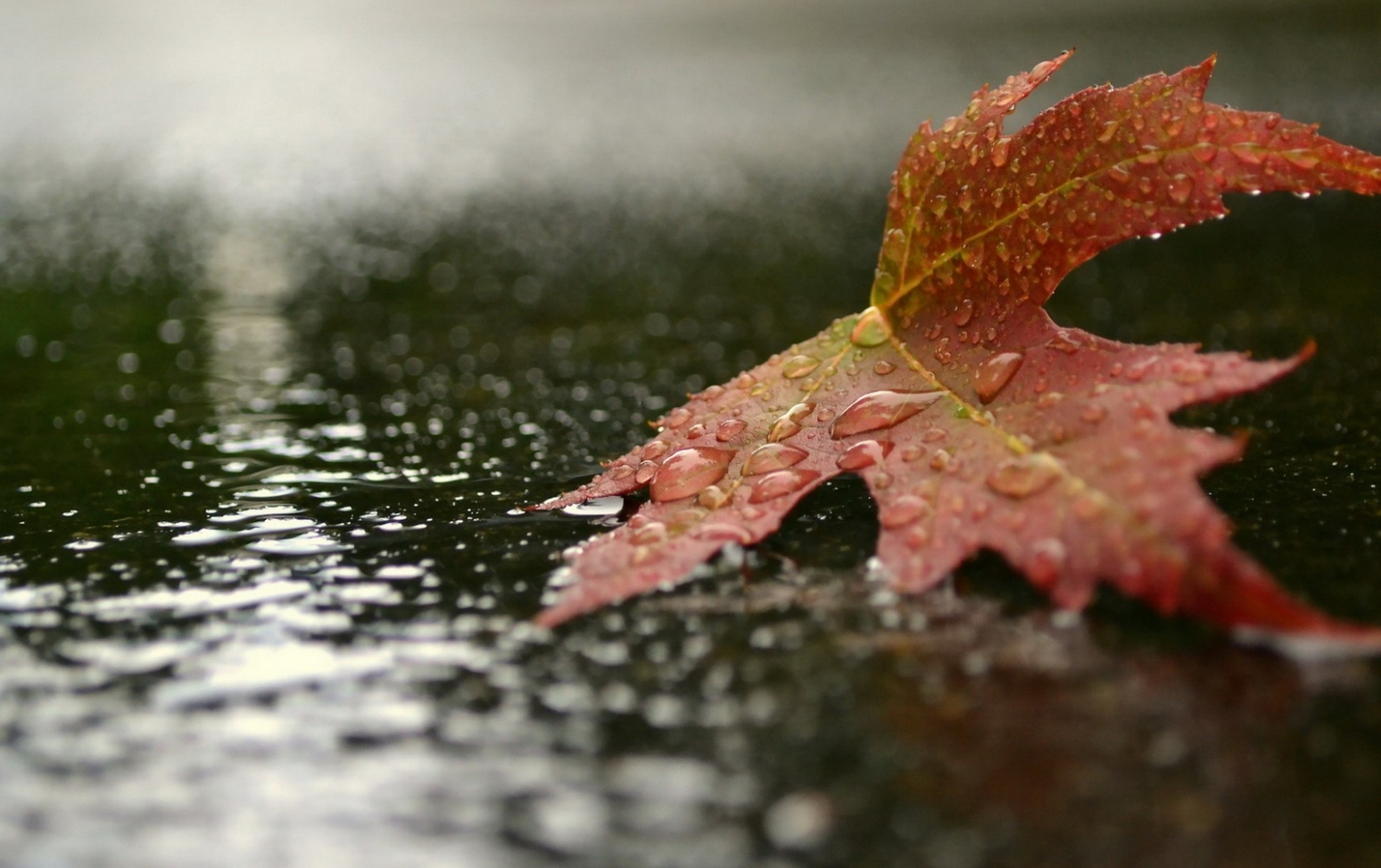 фото дождя 6
