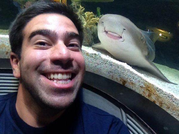 Фотка с акулой