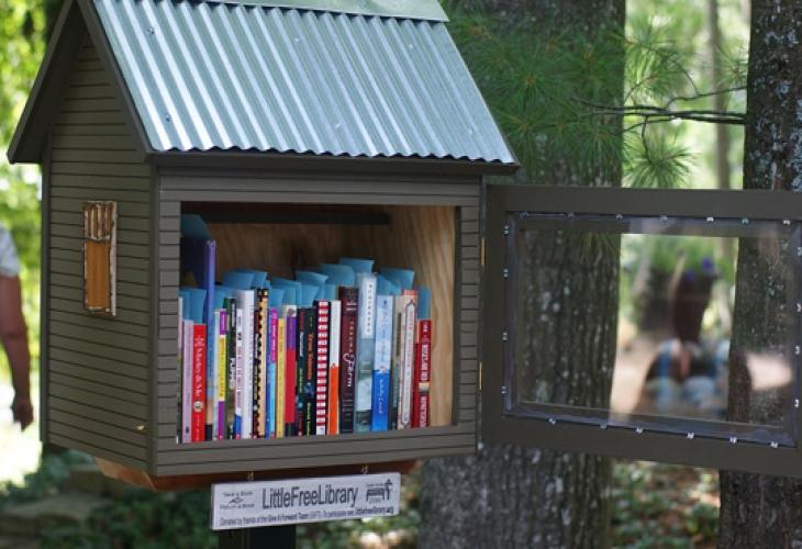 Миниатюрная библиотечка Little Free Library