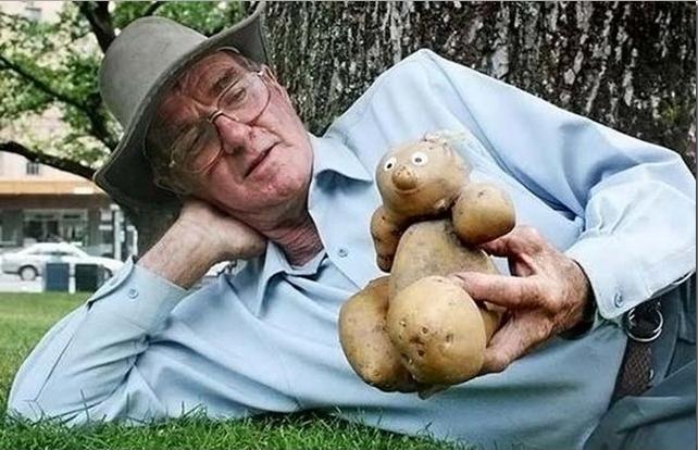 Необычной формы картофель