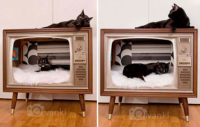 Домик для кошки в телевизоре