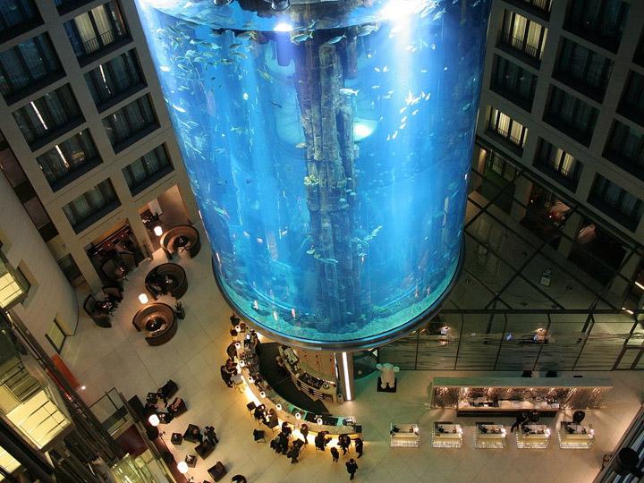 Аквариум AquaDom фото 2