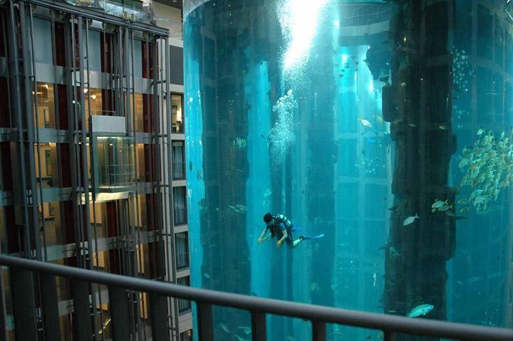 Аквариум AquaDom фото 3
