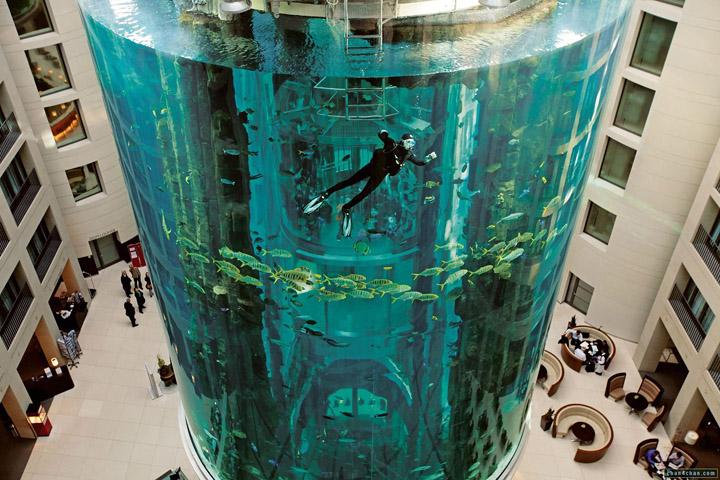 Аквариум AquaDom фото 4