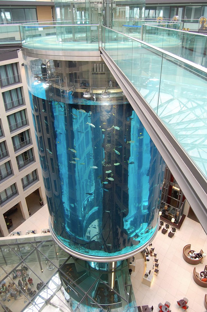 Аквариум AquaDom фото 5