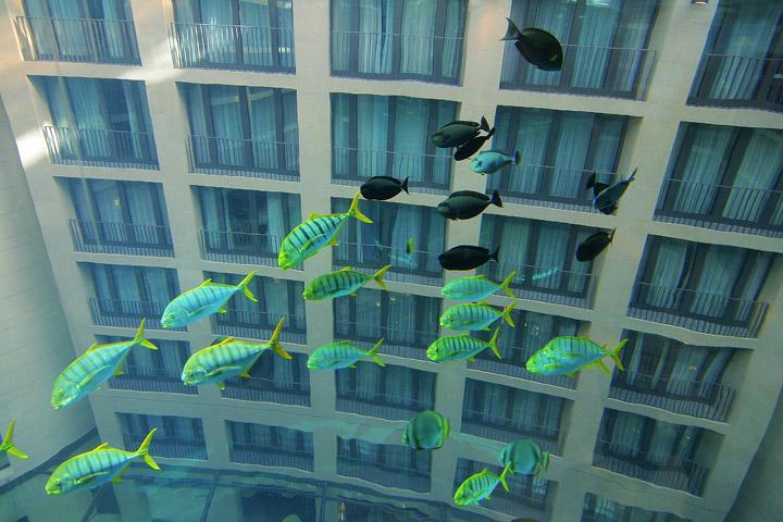 Аквариум AquaDom фото 6