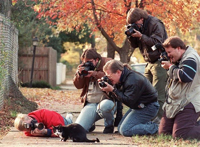 Фотографы, готовые на все 2