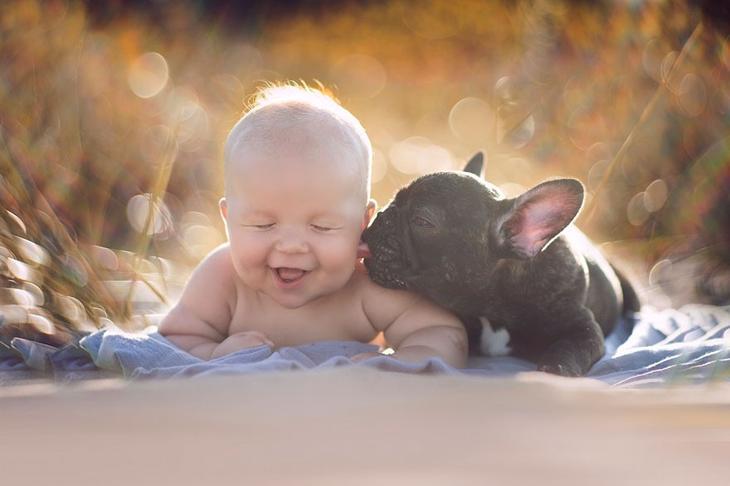 Малыш и бульдожик