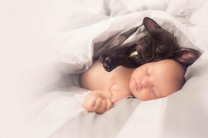 Ребенок и щенок вместе
