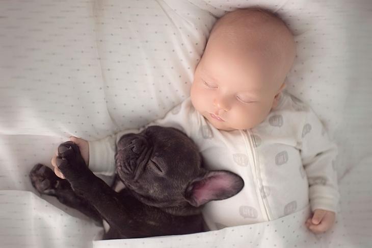 Ребенок и щенок родились в один день