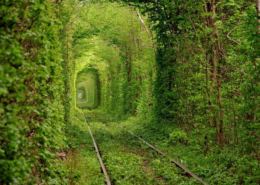 Туннель любви возле Ровно