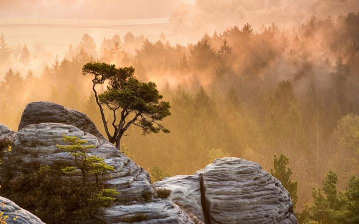 Пейзажи, укутанные туманом 10