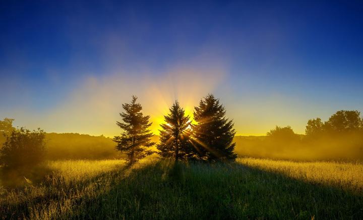 Пейзажи, укутанные туманом 3