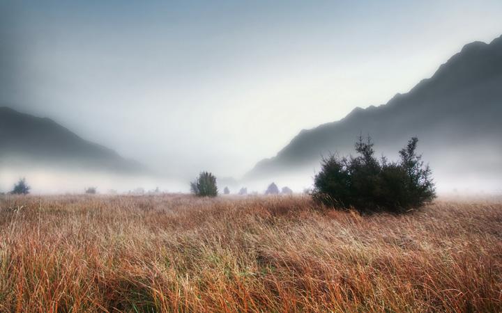 Пейзажи, укутанные туманом 5