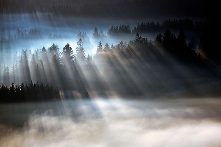 Пейзажи, укутанные туманом 6