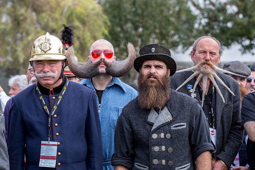 Суоровые бородачи