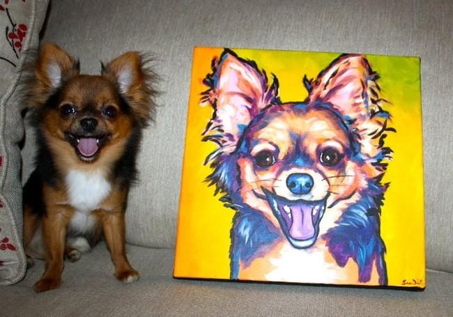 Улыбающаяся собака, фото 10