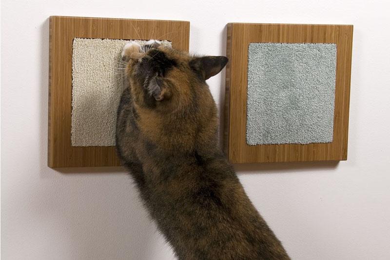 Точилка для кота на стене