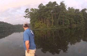 Два рыбака выловили котят из реки в Алабаме