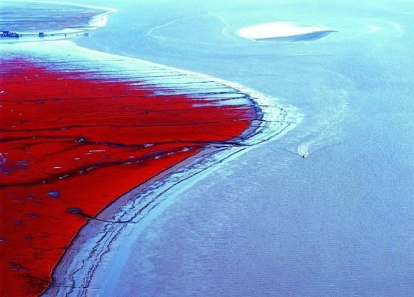 Красный пляж, Паньцзинь, Китай
