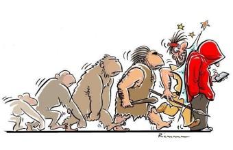 итог эволюции
