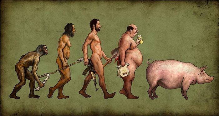 следующая фаза эволюции
