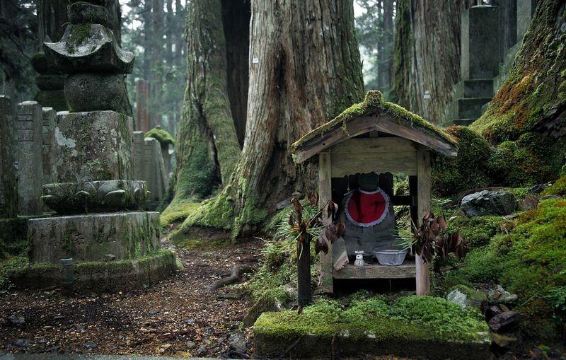 кладбище в Японии фото
