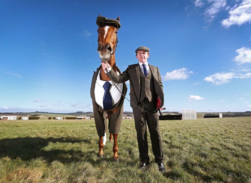 конь в пальто фото