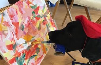 рисующий пес