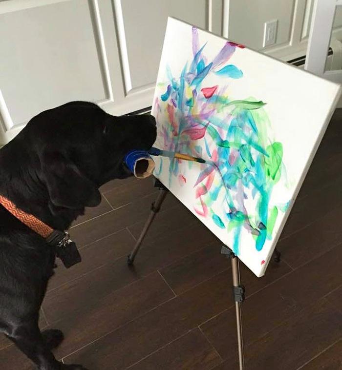 собака которая рисует