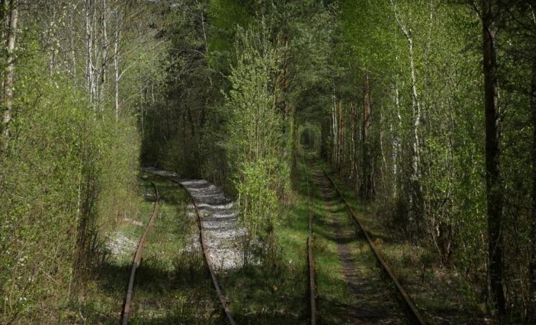 железнодорожная развилка в Клевани