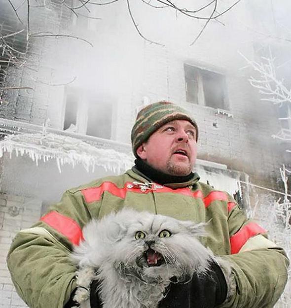 Русский пожарный спас кота