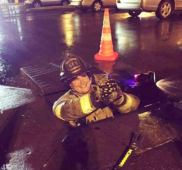 пожарный спас котенка из канализации