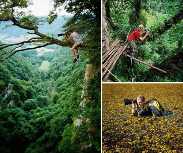 снимки фотографов в джунглях