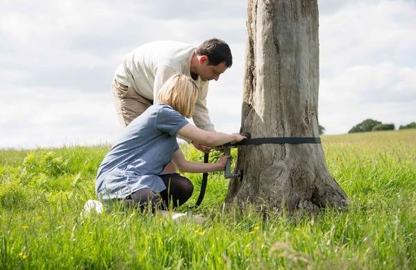 монтаж винтовой лестницы на дереве