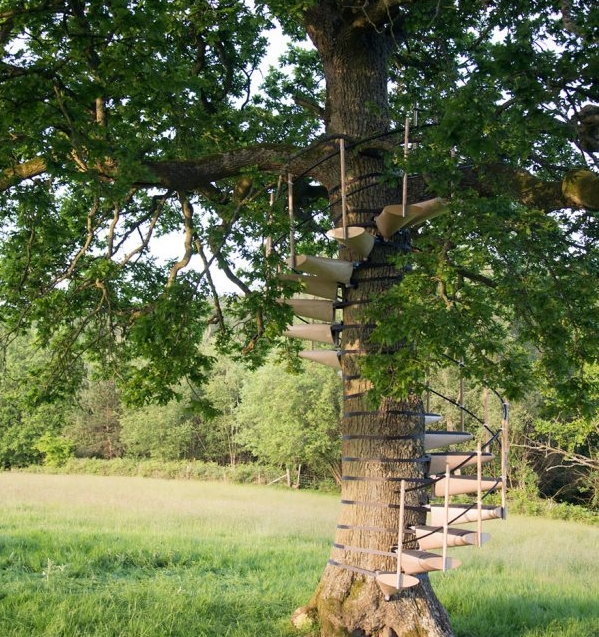 винтовая лестница на дереве