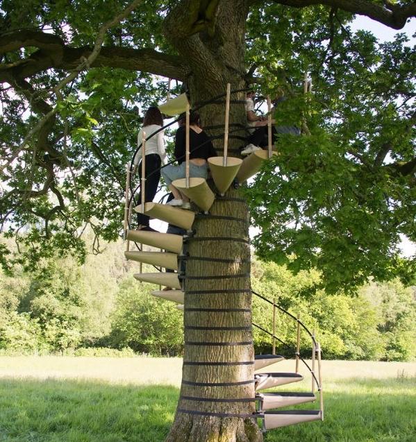 винтовая лестница вокруг дерева