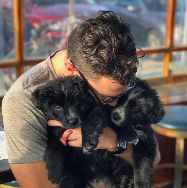 щенки и мужчина