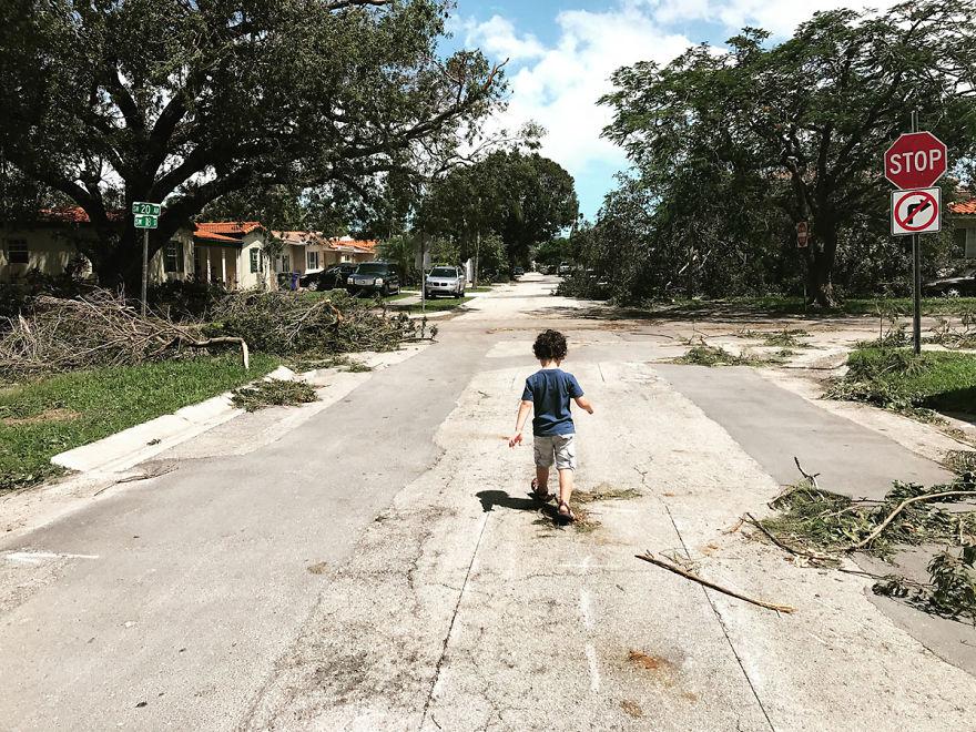 последствия урагана ирма в сша