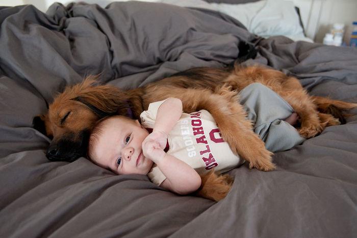 собакен спит с ребенком