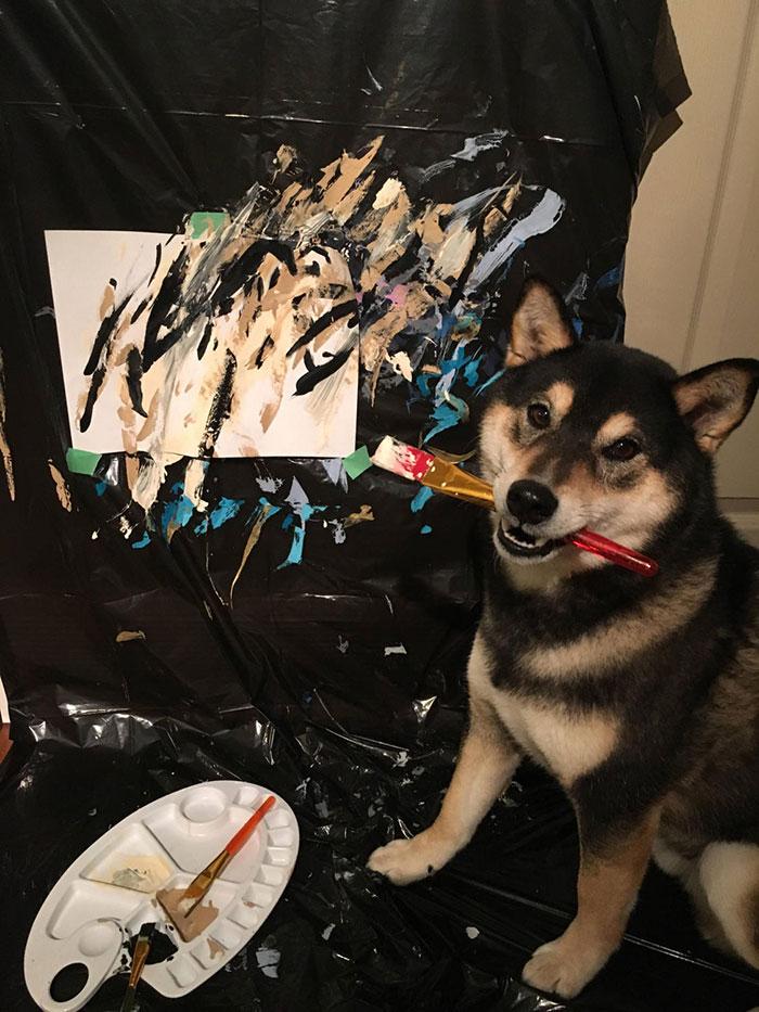 пес рисует картину
