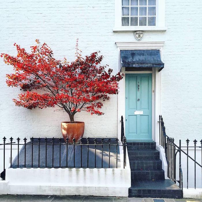 красивое фото лондонского дома