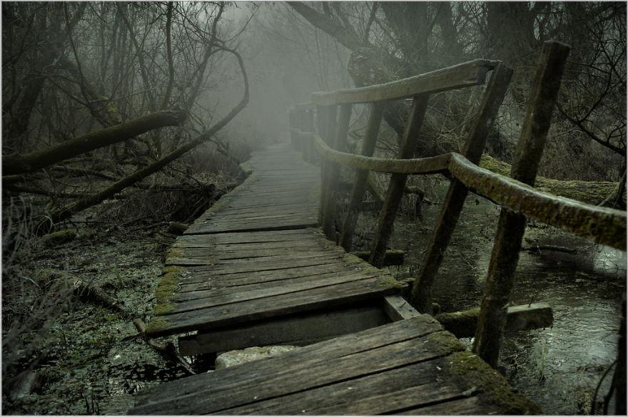 заброшенная тропинка в Венгрии