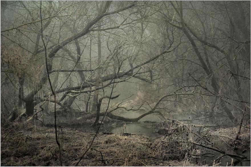 место похожее на мордорские болота