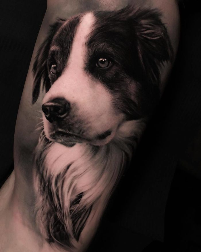 реалистичная татуировка пса