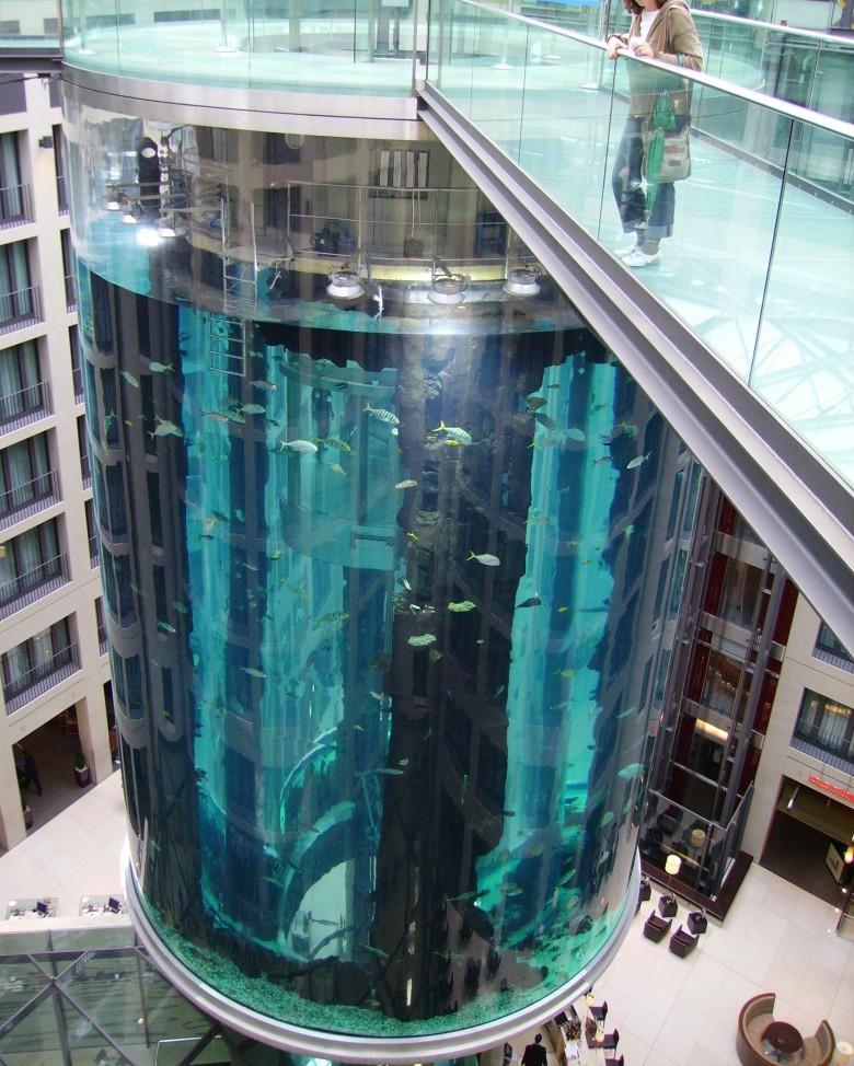 аквариум в отеле