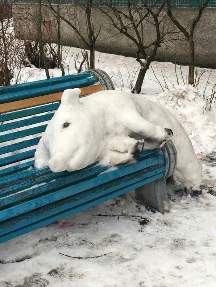 свинка из снега