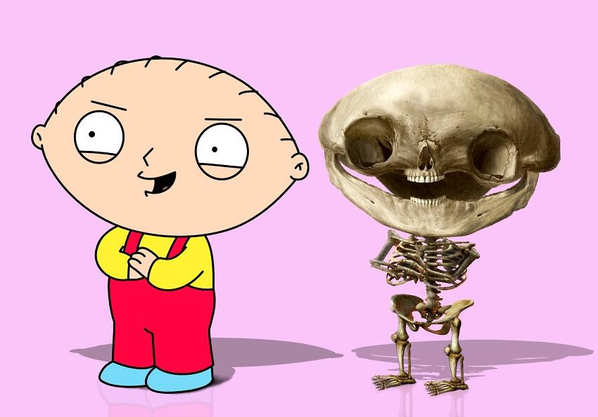 скелет Стьюи Гриффина